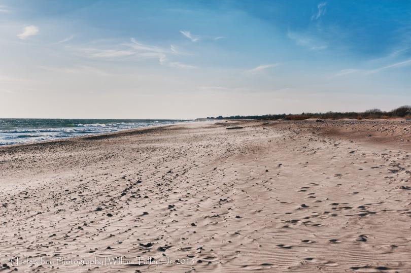 Moonstone Beach 4-2-Edit-Edit-Edit-Edit