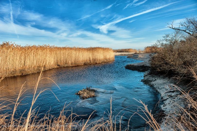 Moonstone Marsh 4/215